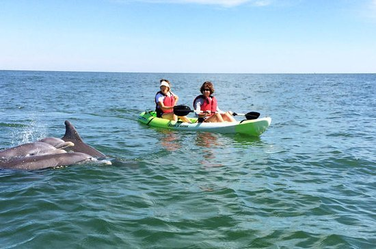 Vacation Condos in Virginia–The best for Boating and Fishing Lovers